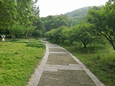 Beautiful road in Caishiji science resort area